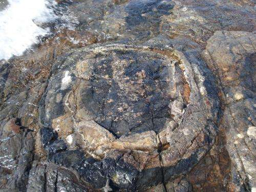 Feast clue to smell of ancient earth