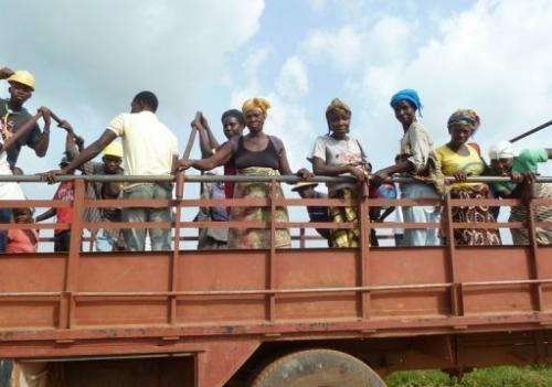 Palm field workers on the Sime Darby drive through a concession in northwestern Liberia, on December 10, 2012