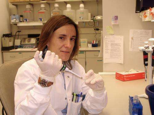 Pancreatic cancer diagnosis under review