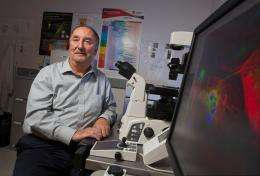 Parasitic worms may help treat diseases associated with obesity