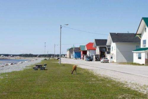 Port-Menier, the only village on Anticosti Island is pictured on August 12, 2013