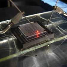 Powerful gallium nitride red light-emitting diodes made with europium and magnesium codoping