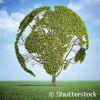Promoting environmental justice worldwide