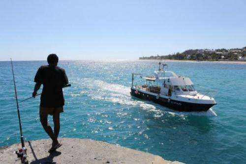 Research Institute for Development staff return to La Reunion, August 10, 2012, after a patrol to tag and count sharks