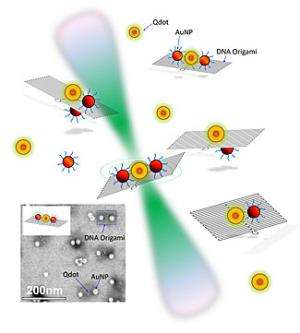 DNA and quantum dots: All that glitters is not gold
