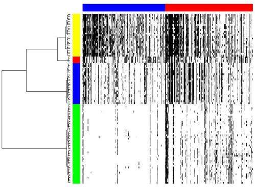 The CORE of the matter: Identifying recurrent genomic regions to determine tumor phylogeny