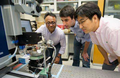 Scientist looks for a deeper understanding of hearing through the bones in our heads