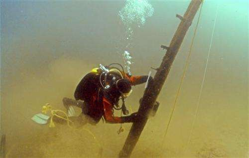 Scientists: Timber in Lake Michigan centuries old