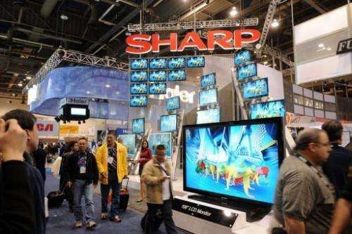 Sharp LCD products are seen at the Consumer Electronics Show in Las Vegas, on January 9, 2009