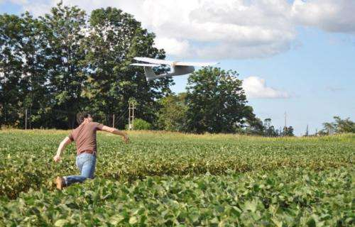 'Skywalker': Aeronautical technology to improve maize yields