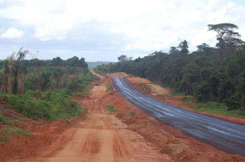 Study of Brazilian Amazon shows 50,000 km of road was built in just 3 years