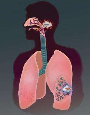 TB bacteria mask their identity to intrude into deeper regions of lungs