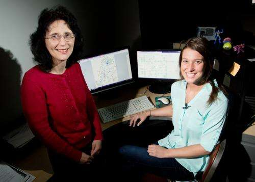 Team finds markers related to ovarian cancer survival and recurrence