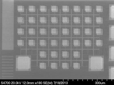 The '50-50' chip: Memory device of the future?