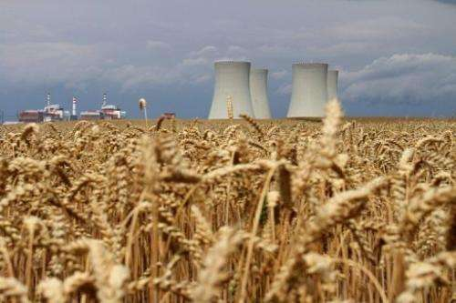 The four cooling towers of Temelin Nuclear Power Plant in the Czech Republic, seen from a grain field on July 24, 2011