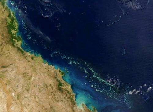 The Great Barrier Reef is pictured in this NASA satellite image taken on August 6, 2004