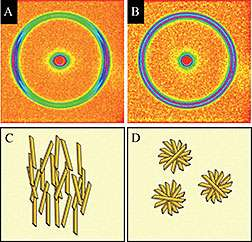 The nanostructure of edible fats