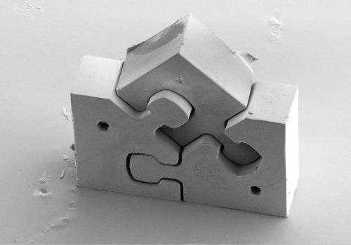 The smallest puzzle in the world