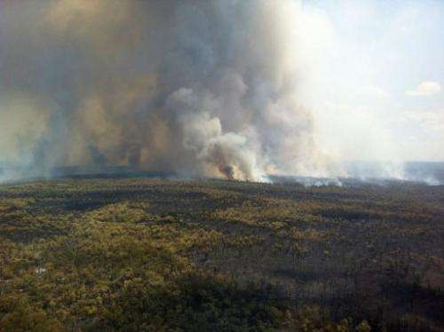 The southern edge of the Redbank fire burns in New South Wales on January 15, 2013