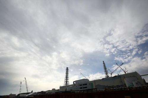 Tokyo Electric Power Co's Fukushima Daiichi nuclear power plant pictured in Okuma, Fukushima Prefecture on November 7, 2013