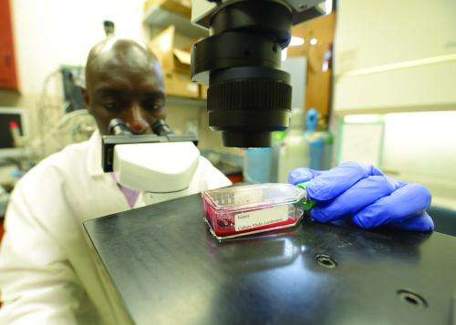Treatment target identified for a public health risk parasite