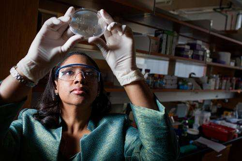 Turning bacteria into chemical factories