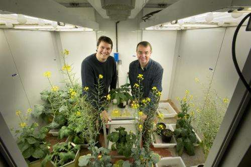 Turning toxic by-product into biofuel booster: Engineered enzyme increases output of alkanes