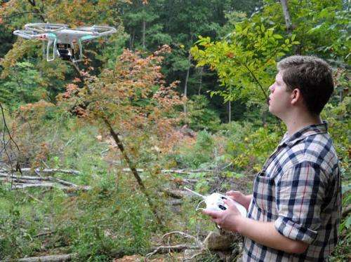 UAH team searches treetops for Maya secrets