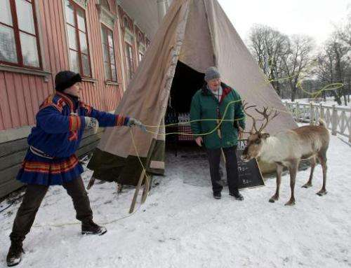 Ulf Bergdahl from the Sami village of Saarivuoma shows his talent with the lasso on a stuffed reindeer at the Skansen Open Air m