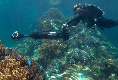 UQ leads launch of world's largest coral reef library
