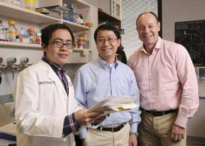 UT Southwestern scientists make mouse model of human cancer, demonstrate cure
