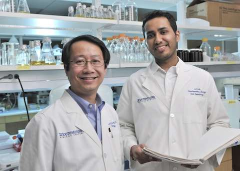 UTSW study identifies potential therapeutic target for incurable, rare type of soft-tissue cancer