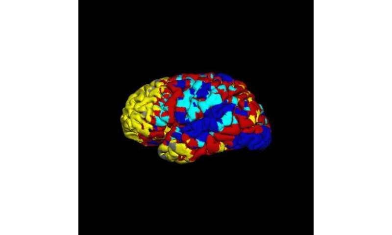 Validating maps of the brain's resting state