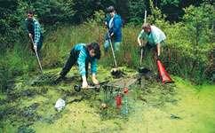 Volunteering slashes conservation costs
