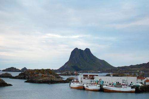 Whale hunting boats are pictured in Stiene, in northern Norway, on August 18, 2008