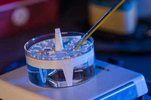 A hydrogel that knows when to go