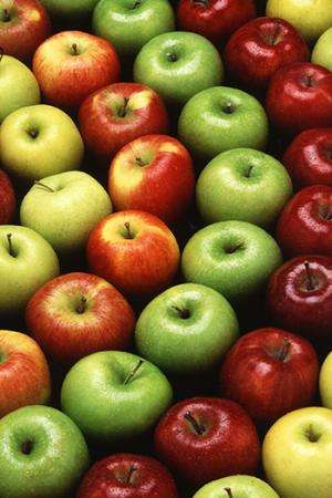 An apple a day could keep obesity away