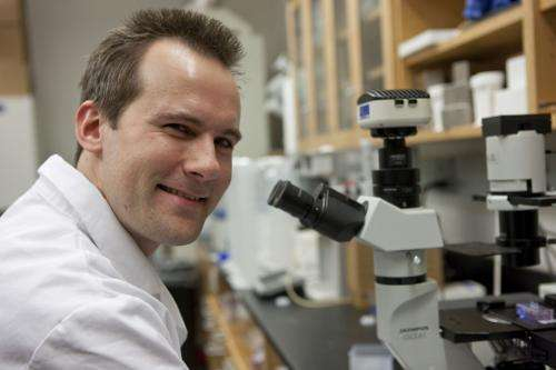 Biomedical engineer studies crowd control and cancer cells