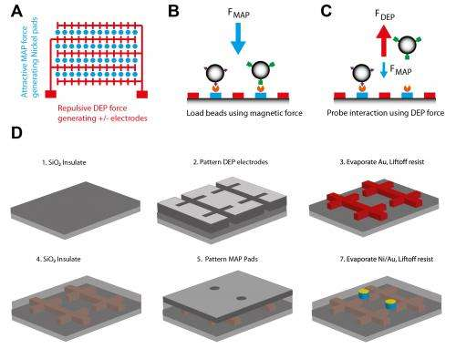 Biomolecular tweezers facilitate study of mechanical force effects on cells and proteins