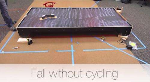 Cats and athletes teach robots to fall