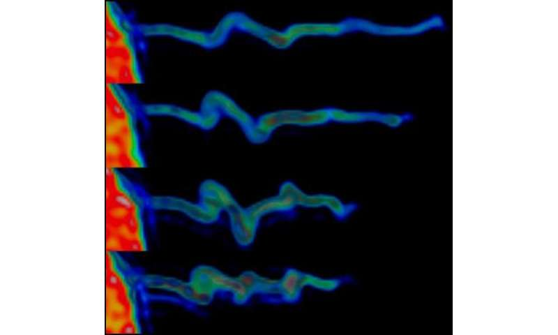 Cells 'feel' their surroundings using finger-like structures