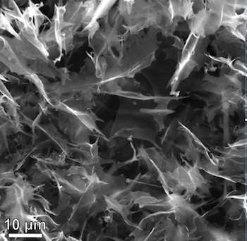 Cheap hybrid outperforms rare metal as fuel-cell catalyst