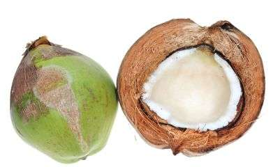 Company Converts Coconut Husk Fibers Into Materials For Cars And Homes