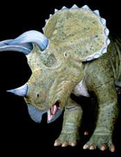 Dinosaurs doing well before asteroid impact
