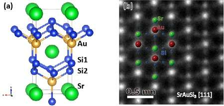 Discovery of a novel gold-based superconductor