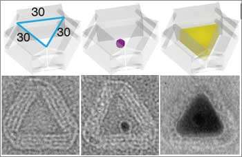 DNA nano-foundries cast custom-shaped 3-D metal nanoparticles