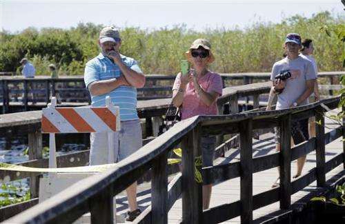 Everglades trail surveyed for cultural artifacts