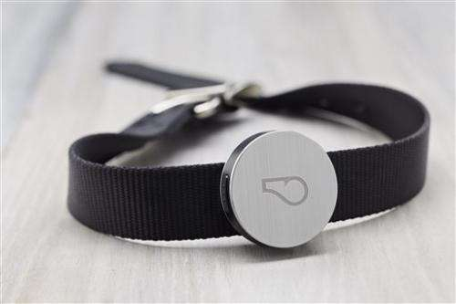 Gadget Watch: Whistle, a fitness tracker for dogs