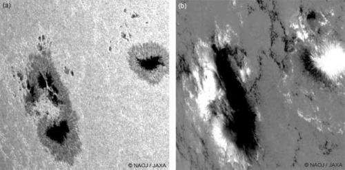 Huge sunspots and their magnetic structure observed by Hinode