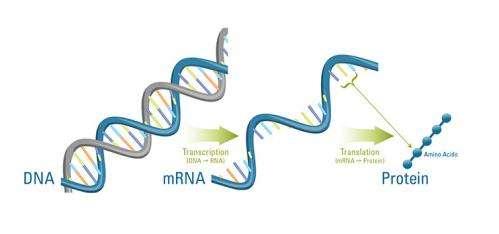 Jumping hurdles in the RNA world